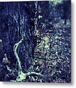 Deer Skull In Forest Metal Print