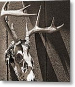 Deer Skull In Sepia Metal Print by Brooke T Ryan