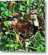 Deer's Green Day Metal Print