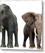 Deinotherium And Elephant Compared Metal Print