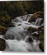 Delicate And Powerful Metal Print by Mike Reid
