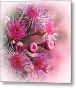 Delicate Buds And Blossoms Metal Print