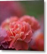 Delicate Layers Of Light Metal Print