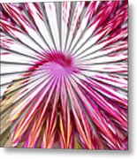 Delicate Orchid Blossom - Abstract Metal Print