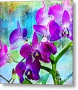 Delicate Orchids Metal Print