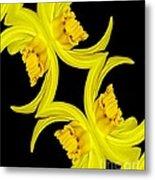 Delightful Daffodil Abstract Metal Print