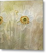 Delightful Daffodils Metal Print