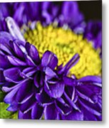 Delights The Eye Metal Print by Christi Kraft