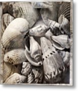 Delivered By The Sea Metal Print