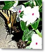 Delta Butterfly Cafe Metal Print