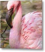 Demure Flamingo - Digital Art Metal Print