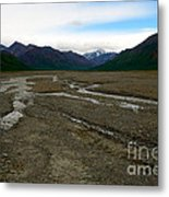 Denali National Park 3 Metal Print