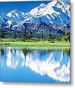 Denali National Park Ak Usa Metal Print