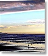 Descendants As Many As The Sand On The Shore Of The Sea Metal Print