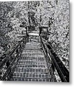 Descent Into The Wilderness Metal Print