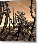 Desert At Dusk Metal Print