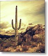 Desert Cactus - Classic Southwest Metal Print
