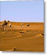 Desert Camels Metal Print