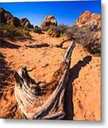 Desert Driftwood Metal Print
