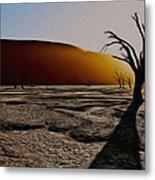 Desert Floor Metal Print