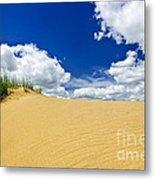 Desert Landscape In Manitoba Metal Print