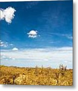 Desert Landscape With Deep Blue Sky Metal Print