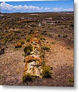 Desert Log Metal Print