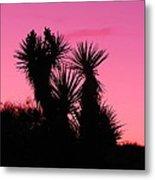 Desert Pink Metal Print