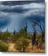 Desert Rains  Metal Print