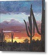 Desert Silhouette Metal Print