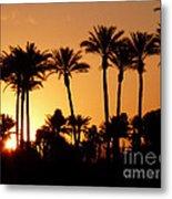 Desert Silhouette Sunrise Metal Print