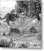 Desert Snowstorm Black And White Metal Print
