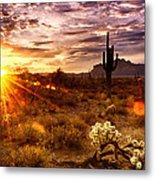 Desert Sunshine  Metal Print