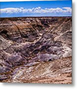 Desert Valley Metal Print
