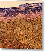 Desert View In Arizona By The Colorado River Metal Print