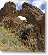 Desert Wildflowers Grand Arch  Metal Print