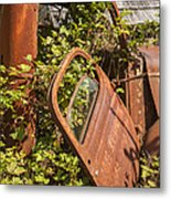 Deserted And Overgrown Metal Print
