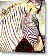 Designs From Nature 2 Metal Print