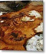 Detail Mammoth Springs Yellowstone Metal Print