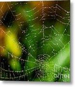 Dew Drops On Spider Web  Metal Print