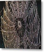 Dew On The Web Metal Print