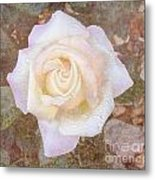 Dewy Dawn Peace Rose Metal Print