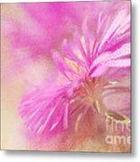 Dewy Pink Asters Metal Print by Lois Bryan