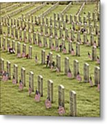 Dfw National Cemetery II Metal Print
