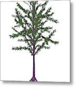Dicroidium Prehistoric Seed Plant Metal Print
