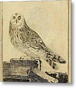 Die Stein Eule Or Church Owl Metal Print by Philip Ralley