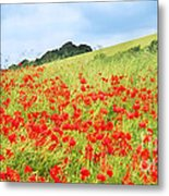 Digital Art Field Of Poppies Metal Print by Natalie Kinnear
