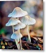 Digital Art Mushrooms Metal Print by Tammy Smith