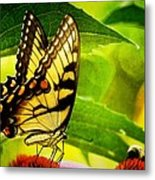 Dining With A Friend Metal Print