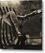 Dinosaur Bones 2 Metal Print